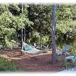 Relax in the hammock area at Muriel's Grove